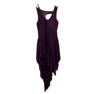 Balera  SA Dance Asymmetrical Mesh Tank Dress